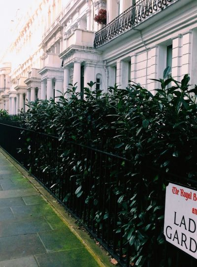 In a Photograph | Notting Hill + Hyde Park, January 2015