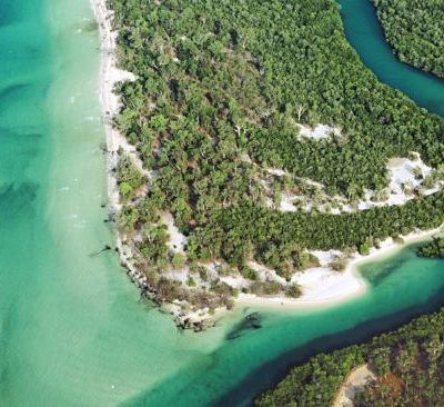 4 Incredible Things To Explore On The Tiwi Islands