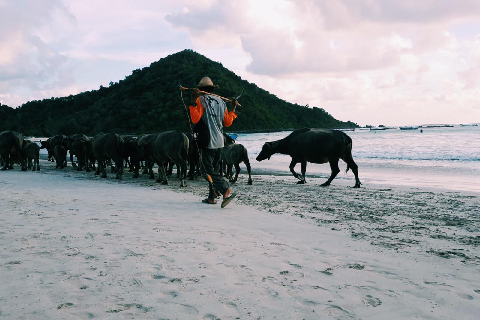 on my wanderlist: indonesia