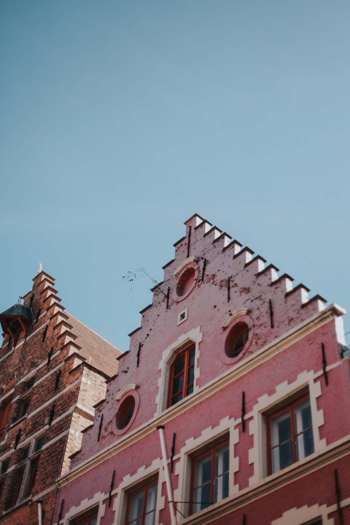 Pink Architecture in Bruges